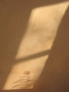 Shadow of the Object