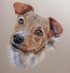 Pawtrait, by Kirsty OLeary-Leeson