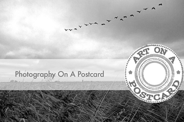 Photography on a Postcard, by Simon Taylor