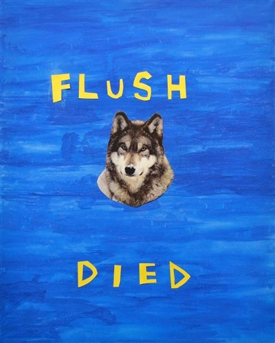 Flush Died