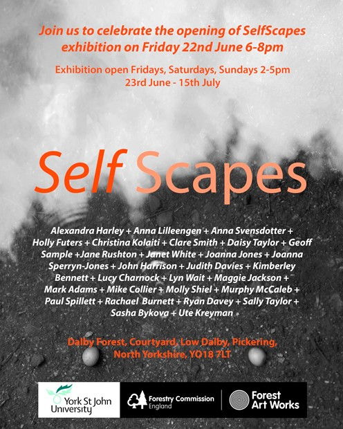 Selfscapes exhibition, by Clare Smith