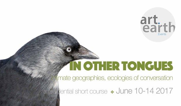 In Other Tongues (short course)