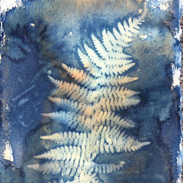 Cyanotype Leaf Printing Workshop // £40, by Lucy Ridges