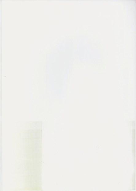 Untitled n. (2013)  Digital C-Print Perma Jet