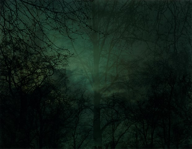 In Darkness Visible - Credit: Nicholas Hughes