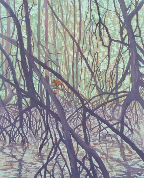 Mangroves Monkeys Mountains