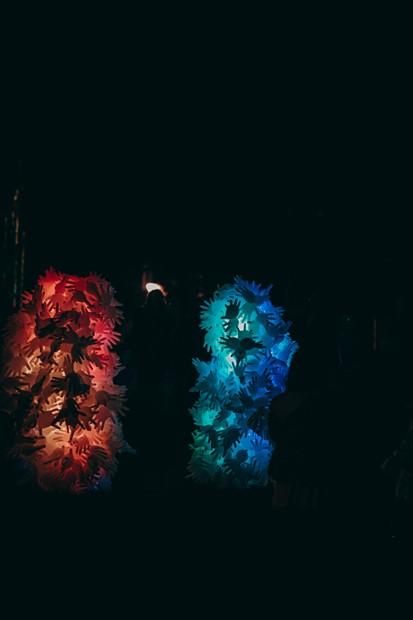 Phalanges (Light)