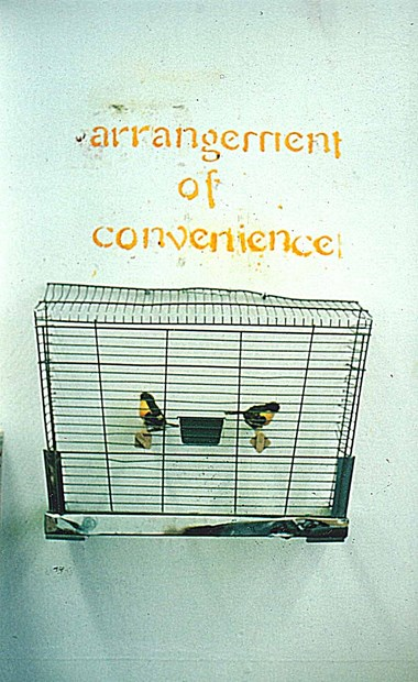 ART SCHOOL PROJECT: Caged Bird series