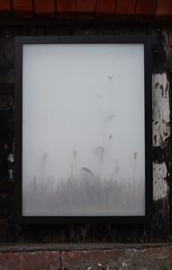 Window Box I, by Charys Wilson