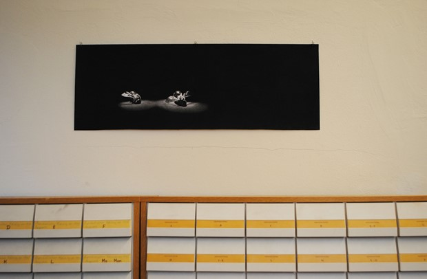 Still Life IV - Credit: When shown at the Humboldt university for Art Science Exhibit