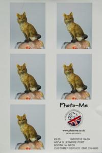 Photo-Me, by Michael Walls