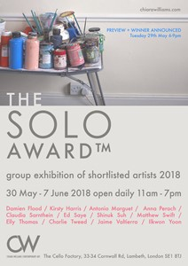 The SOLO Award 2018, by Ed Saye