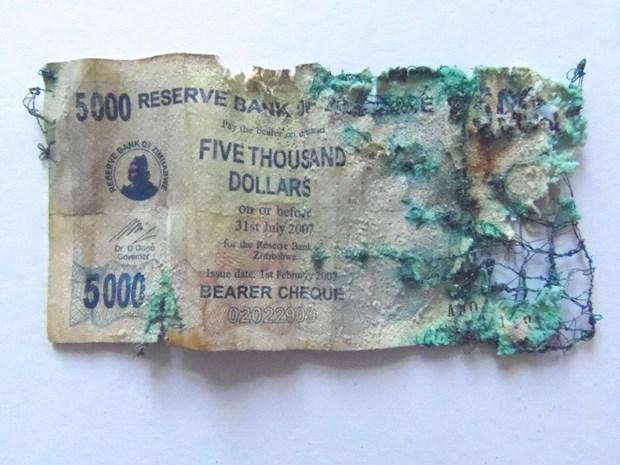 Zimbabwean Dollar notes