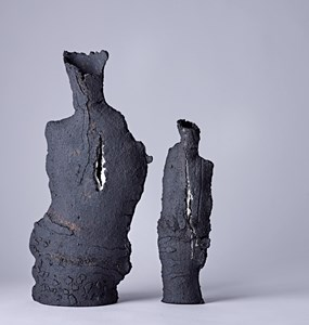 Torn I and II, by Sarah Hitchens