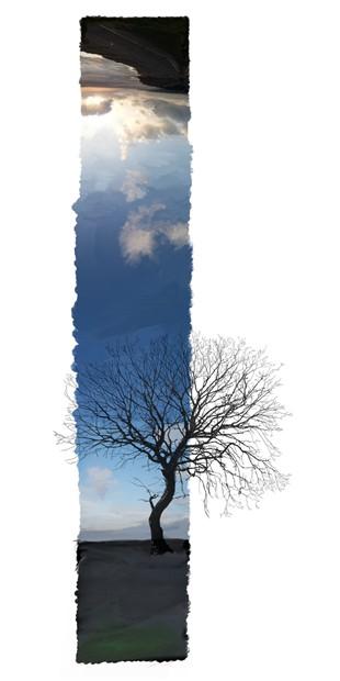 A Deep Breath Of Sky