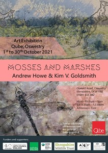 Mosses and Marshes exhibition, by Andrew Howe