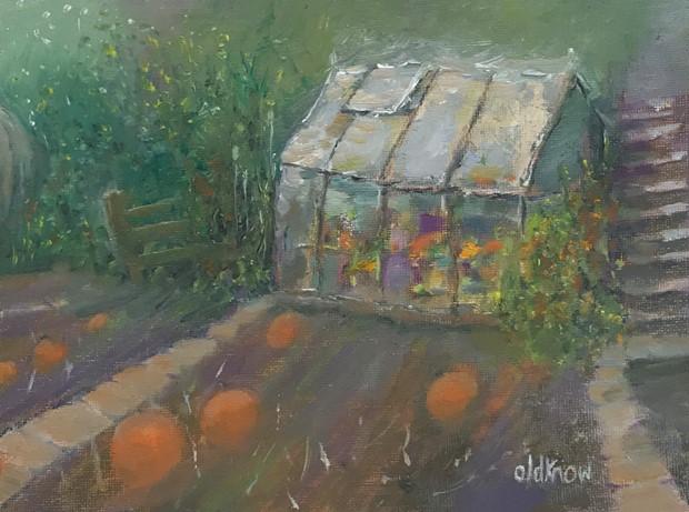 Last of the light on the pumpkins, Wyver Lane gardens, Belper
