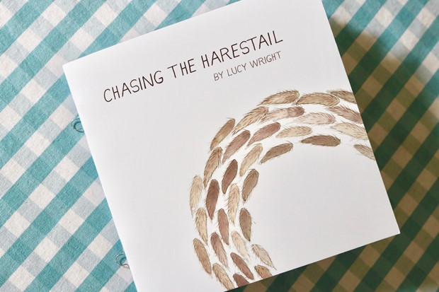 Chasing the Harestail