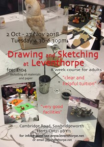 Drawing and Sketching Course, by Julie Arnall