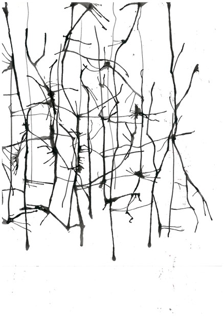 Initial conceptual sketches