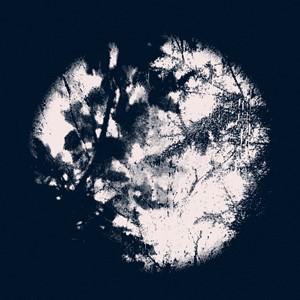 Planet (1), by Elizabeth Hindle