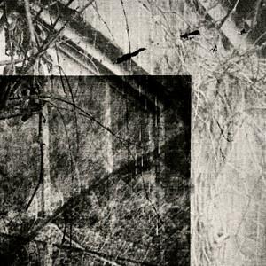 Untitled (Block Series 1), by Elizabeth Hindle