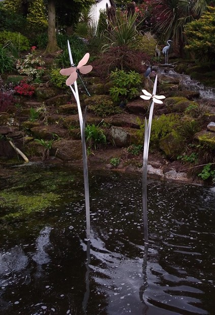 """""""Dragonflies On Reeds"""""""