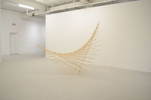 Parabolic Curve 3, by Aimee Nelson