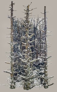 Snow scene (centre panel), by Dariusz Romanowski